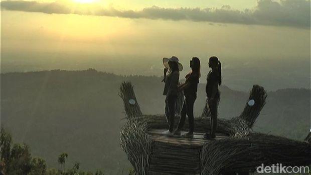 Sunset di Tangan Raksasa, Pinus Pengger (Usman Hadi/detikTravel)