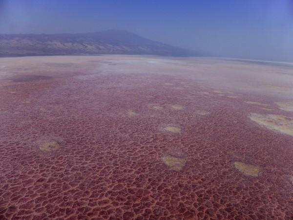 Permukaan danau terlihat berwarna pink jernih bagaikan kaca dan panorama gunung berapi sekelilingnya membuatnya sangat memesona (Thinkstock)