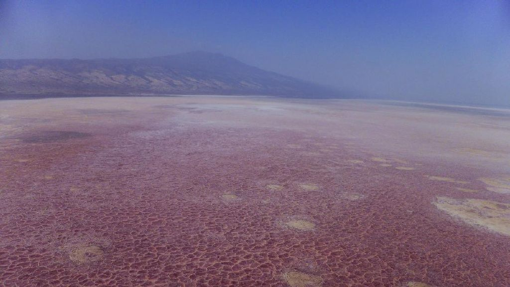 Danau Neraka yang Bikin Hewan Membatu di Tanzania