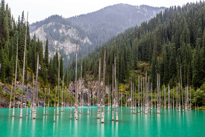 Danau Kaindy di Kazakhstan
