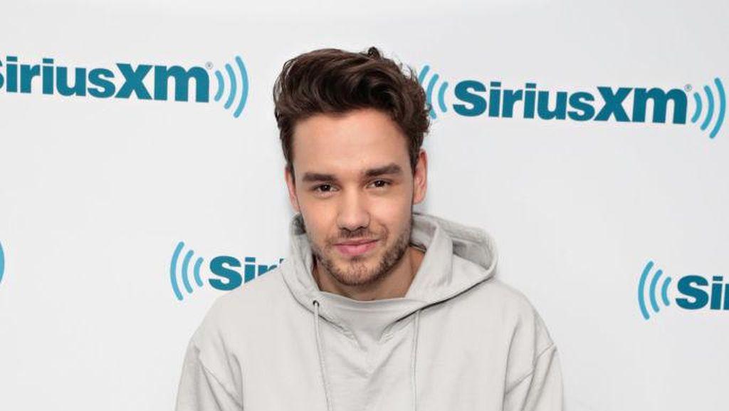 Liam One Direction Pose Tanpa Busana, Netizen Ternganga