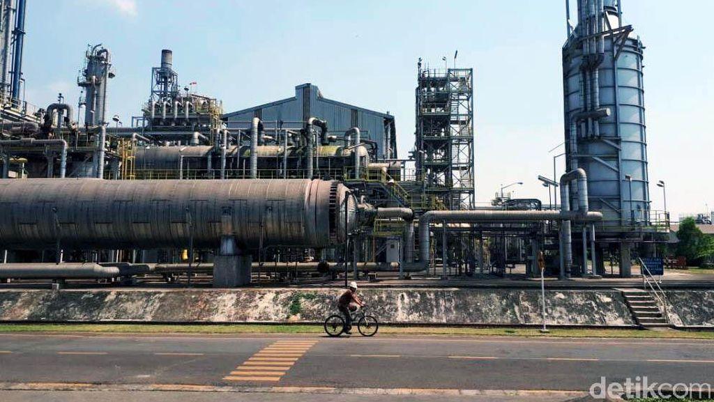Pupuk Kaltim Mau Bangun Pabrik Methanol Senilai Rp 37 T