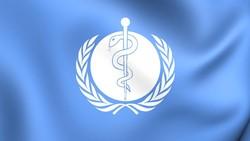 Pandemi Makin Membaik, WHO Sebut Kematian karena COVID-19 Turun 20 Persen