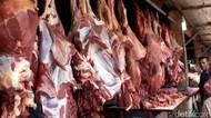 Bulog Dapat Tugas Impor Daging Sapi Brasil Tahun Depan