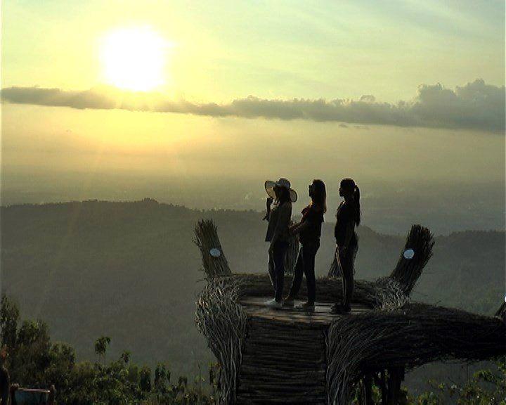 Tangan Raksasa di Hutan Pinus  Pengger, Dlingo, Bantul, Yogyakarta