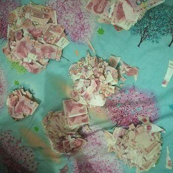 Ditinggal di Rumah, Bocah Ini Robek-robek Uang Total Rp 96 Juta
