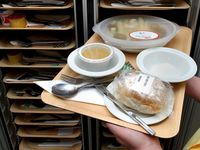 Rumah Sakit Khusus Veteran Ini Sajikan Kecoa di Dalam Makanan Pasien