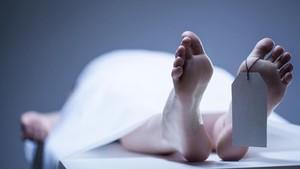 Tragis! Bocah 9 Tahun Bunuh Diri karena Dibully