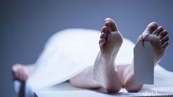 Seorang WNI Meninggal Akibat Rabies di Rumah Sakit Malaysia
