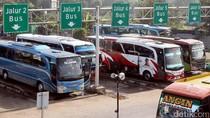 1,5 Juta Sopir Bus cs Nganggur Gara-gara Corona