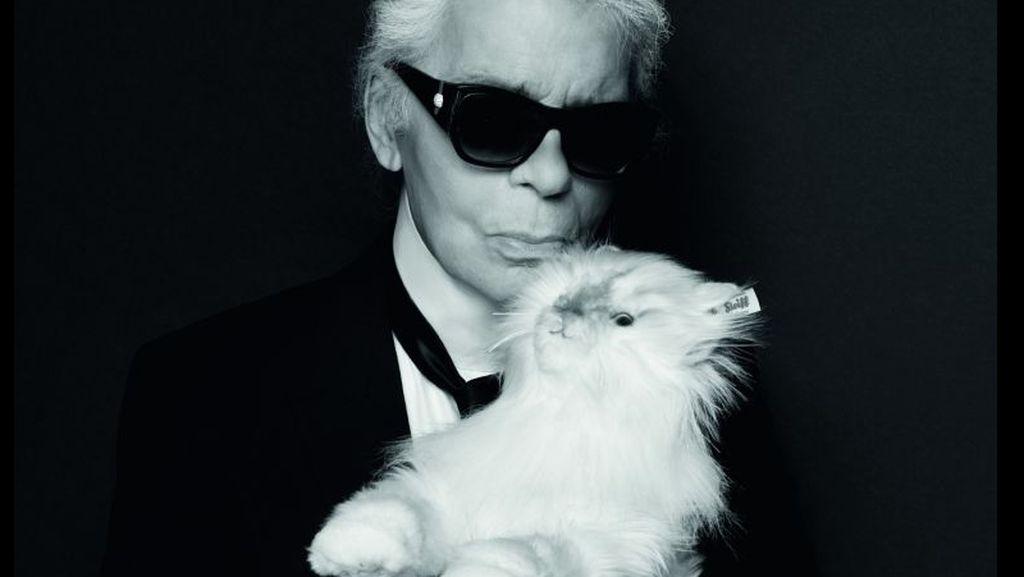 Warisan Karl Lagerfeld Rp 6,4 T Belum Dibagi, Akuntan Menghilang