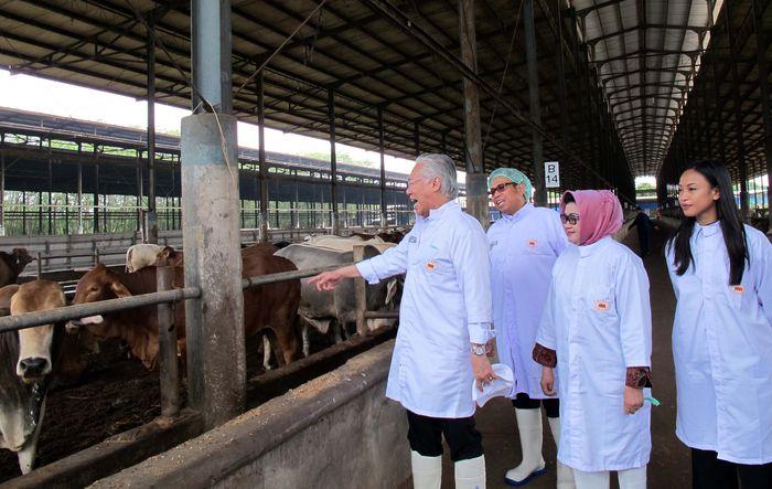 Presiden Direktur PT Bina Mentari Tunggal, Juan Permata Adoe menjelaskan kepada Menteri Perdagangan Enggartiasto Lukita tentang ketersediaan pasokan sapi selama Ramadan hingga Lebaran 2017. Pool/dok. Kemendag.