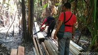 Patroli Karhutla, Tim Polres Pelalawan Temukan Illegal Logging