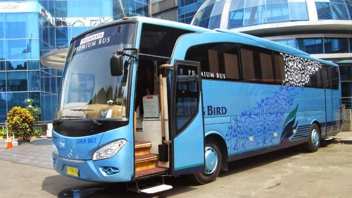 PT Blue Bird meluncurkan bus mewah rasa pesawat kelas bisnis untuk mudik Lebaran