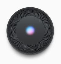 Bukan Siri Speaker, tapi HomePod