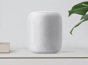 Survei Para Pembeli Speaker Pintar, Puas atau Kecewa?