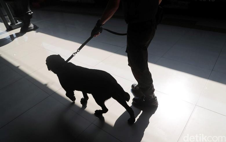 Anjing Pelacak Jaga Area Final Debat Pilgub Jabar