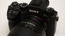 Sony Garap Sensor Full Frame 60 Megapixel?