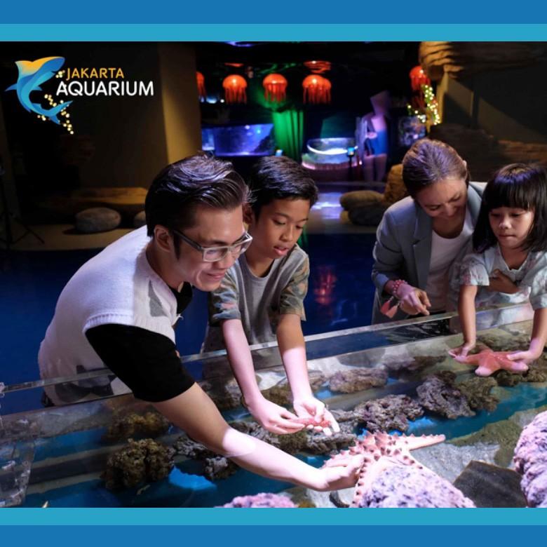 Neo Soho Aquarium: Inovasi Edutainment Jakarta Aquarium Hadir Di Neo SOHO Mall