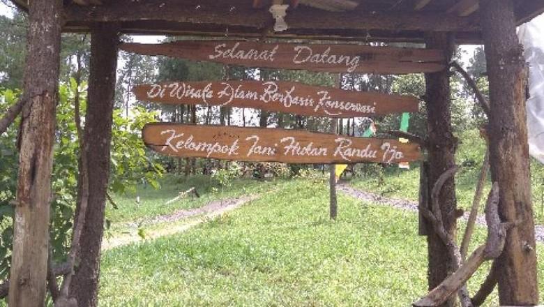 Ilustrasi objek wisata Jurang Jero (Vebriana Puji Astuti/dtraveler)