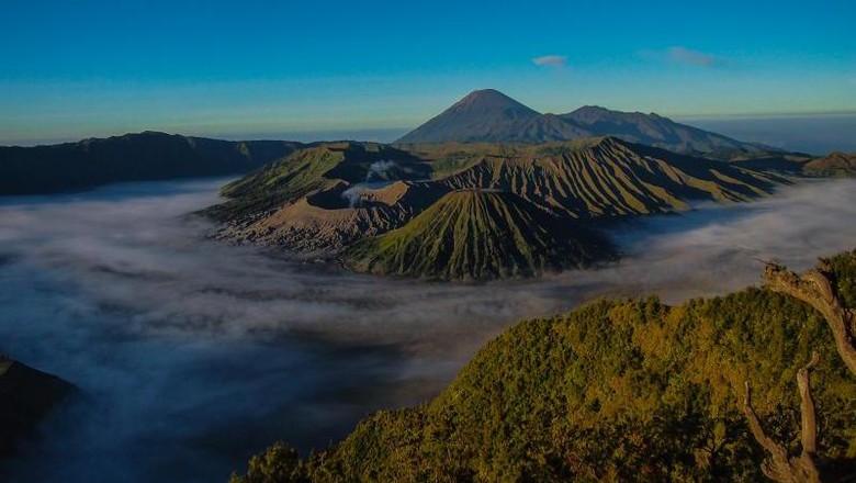 Ilustrasi Gunung Bromo (Musida/dTraveler)