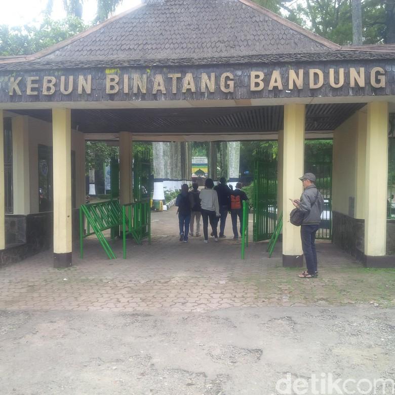 Libur Lebaran, Harga Tiket Masuk Kebun Binatang Bandung Naik