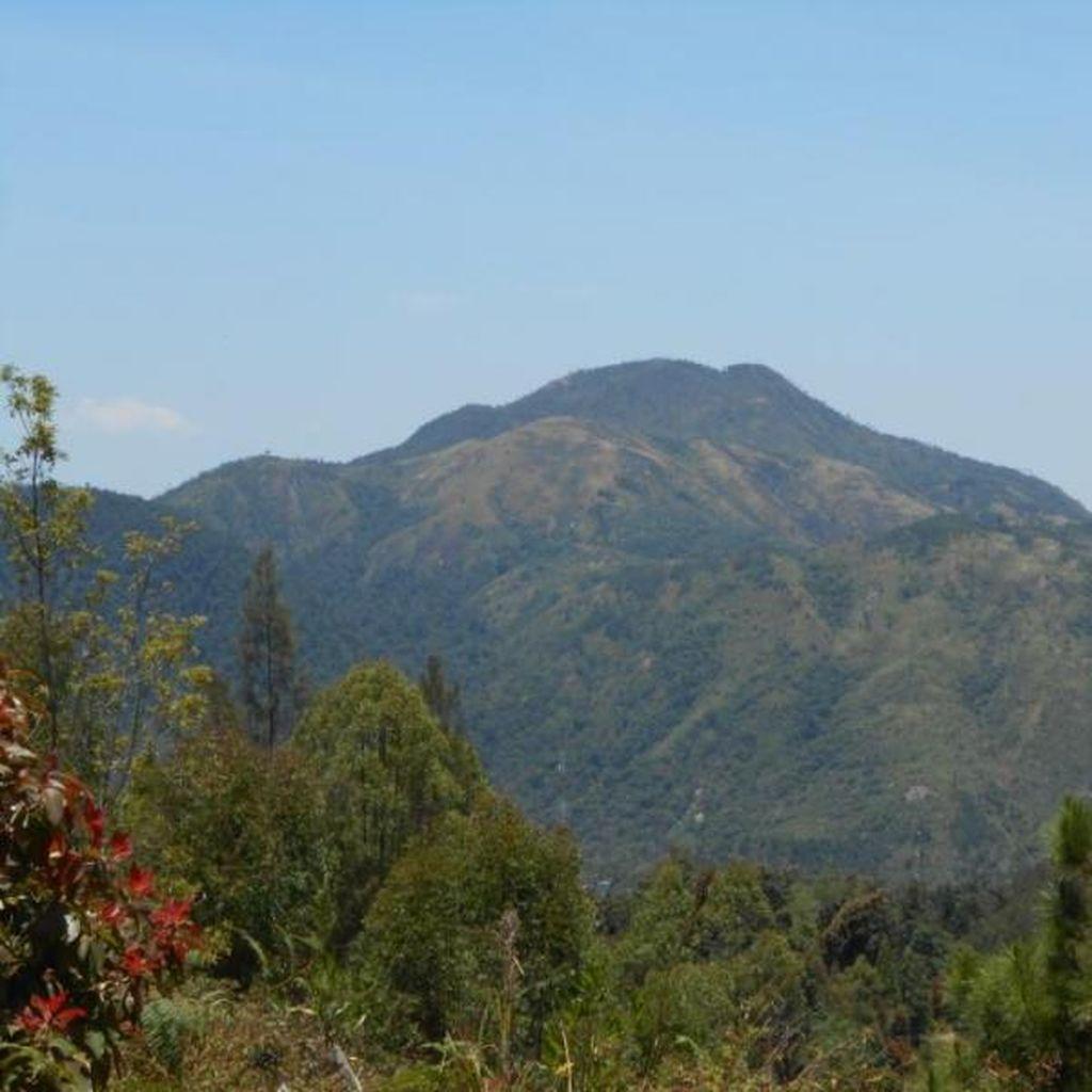 Cuaca Berkabut dan Hujan, Api di Gunung Lawu Hampir Padam