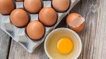 Waduh! Saking Panasnya, Telur-telur yang Diangkut di Truk Ini Sampai Menetas?