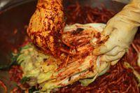 Pembuatan kimchi.