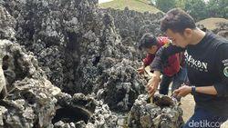 Mau Mudik ke Cirebon, Jangan Lewatkan 10 Destinasi Ini