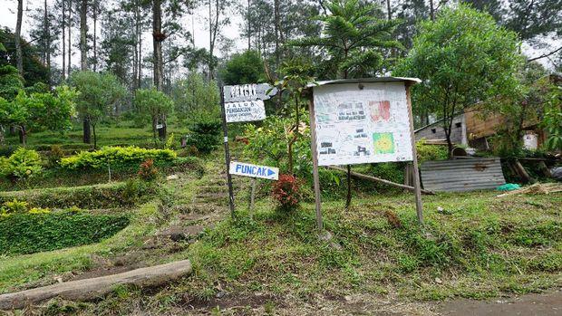Camping ground Basecamp Mawar Ungaran