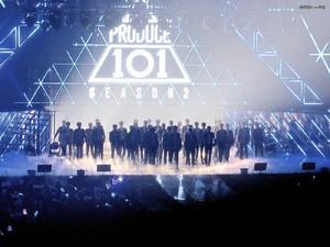 Ulah Ekstrem Fans Gunting Rambut Penggemar Lain Saat Nonton Konser K-pop