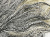 Rambut Sudah Beruban di Usia Muda? Ini Penyebabnya Menurut Ahli