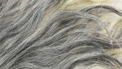 5 Penyebab Rambut Beruban di Usia Muda