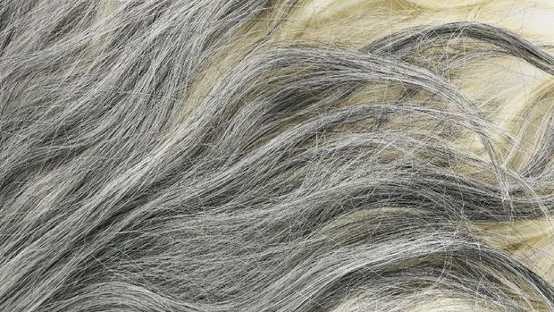 Woman looking at the first grey hair on her scalp