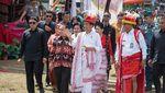 Foto: Ini Kuda Sandalwood untuk Jokowi, dari Sumba ke KPK
