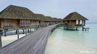 Maldives juga sudah memenangi banyak gelar dalam ajang ini