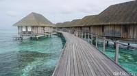 Wow! UEA Mau Bikin Tempat Wisata Ala Maldives di Indonesia