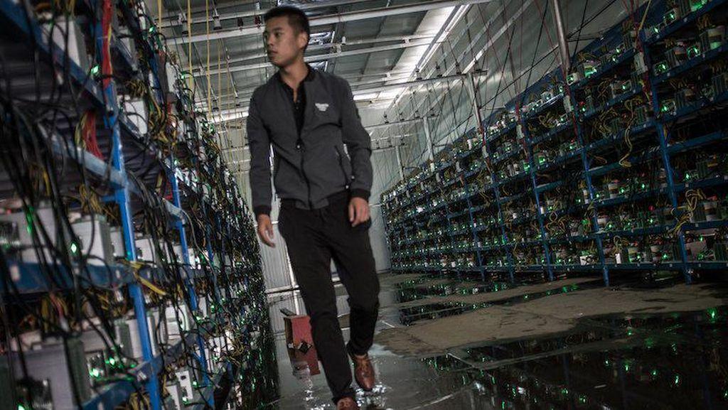 Drama Juragan Bitcoin Terpaksa Tutup 10 Tambang Miliknya