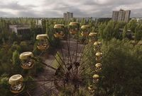 Kota Pripyat kini ditumbuhi rumput dan pepohonan layaknya hutan