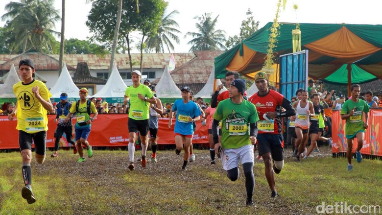 Foto: Banyuwangi Ijen Green Run (Ardian Fanani/detikTravel)