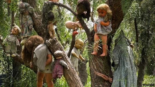 Terdapat ratusan boneka di Isla de Las munecas, Meksiko ini. Gunanya untuk menenangkan hantu gadis kecil yang pernah tenggelam dan tewas di dekat pulaunya. Sampai sekarang masyarakat mengaku sering melihat anak kecil bermain boneka di pulau ini, dan juga sering mendengar bisikan aneh dari boneka-boneka yang digantung (Iromepin/ BBC)