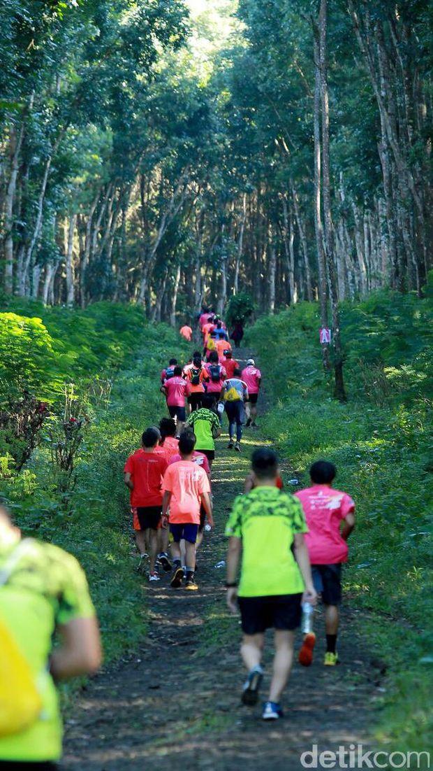 Banyuwangi Ijen Green Run 2017/
