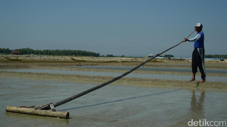 Kemarau Basah, Petani Garam di Rembang Resah