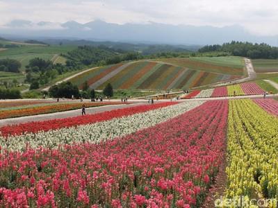 Lomba Nulis Ngabuburit Bisa Libur Lebaran ke Hokkaido, Ayo Ikutan!