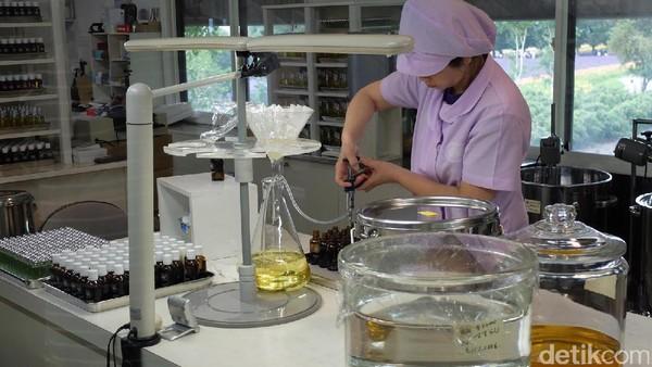 Dalam ruang berdinding kaca, sejumlah perempuan nampak sibuk meracik cairan lavender yang sudah diproses ekstraksi (Baban/detikTravel)