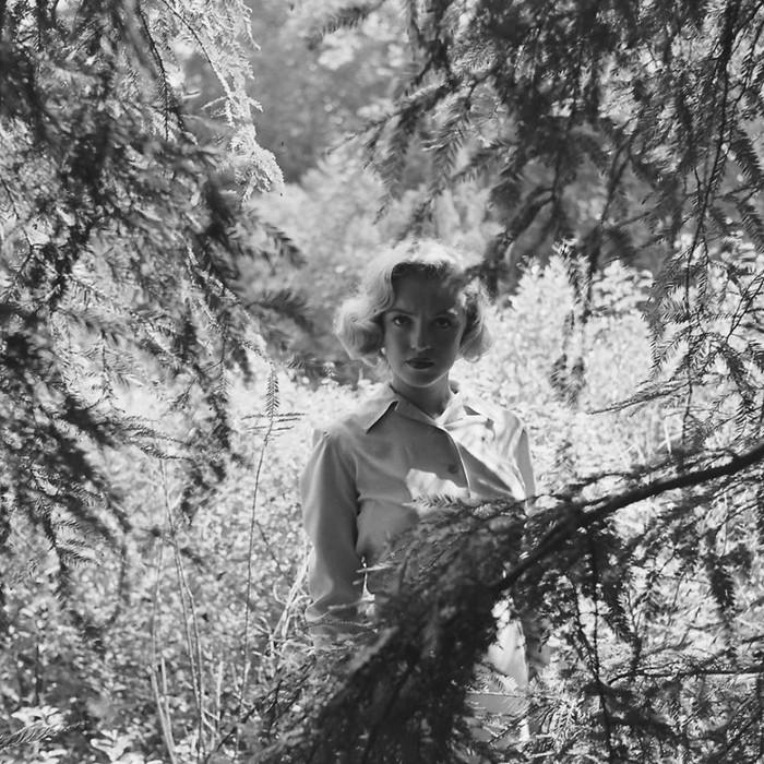 foto Marilyn Monroe di hutan karya fotografer Ed Clark.