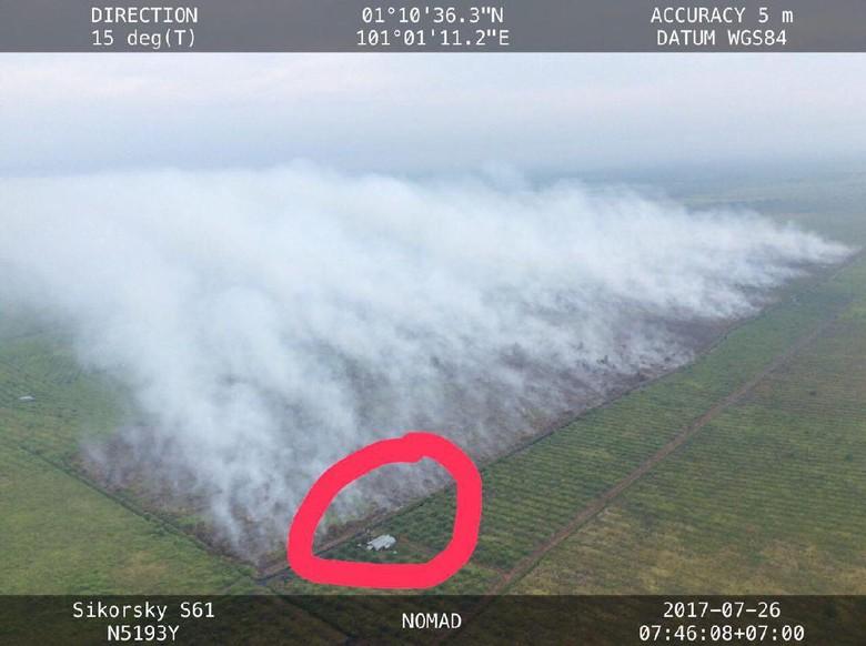 KLHK: Lahan Dibakar di Riau Milik Pabrik Kertas yang Izinnya Dicabut