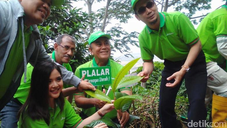 101 Tanaman Langka Ditanam di Gunung Selok Cilacap