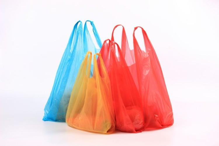 Sayuran Dalam Kantong Plastik